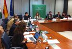 Aprobado el presupuesto del Consorcio Fernando de los Ríos para 2015